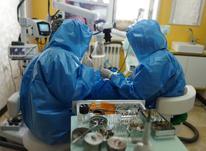 دستیار دندانپزشک تخصصی اندو در شیپور-عکس کوچک