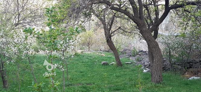 باغ دره مرادبیک و سیلوار متری  در گروه خرید و فروش املاک در همدان در شیپور-عکس6