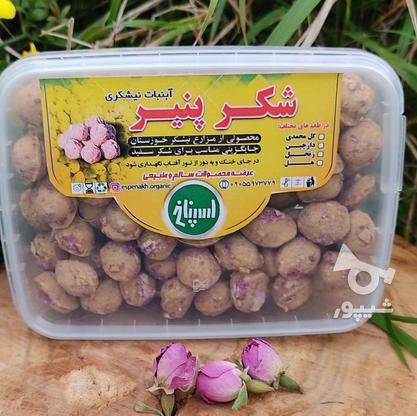 فروش انواع عسل و محصولات ارگانیک در گروه خرید و فروش خدمات و کسب و کار در مازندران در شیپور-عکس5