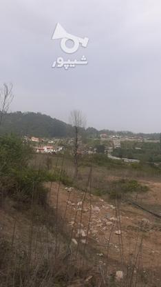 زمین کشاورزی خارج بافت  در گروه خرید و فروش املاک در مازندران در شیپور-عکس1