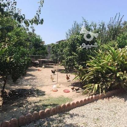 فروش زمین مسکونی 488 متر در بابلسر در گروه خرید و فروش املاک در مازندران در شیپور-عکس3