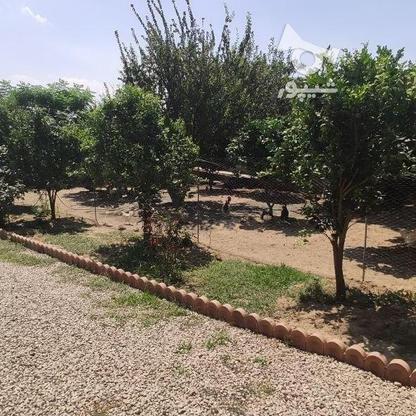 فروش زمین مسکونی 488 متر در بابلسر در گروه خرید و فروش املاک در مازندران در شیپور-عکس2