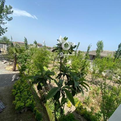 فروش ویلا 1050 متر در آمل در گروه خرید و فروش املاک در مازندران در شیپور-عکس8
