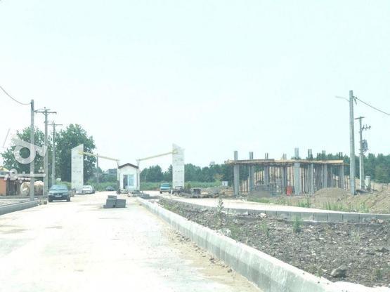 زیباکنار زمین 300متری مسکونی سنددار  در گروه خرید و فروش املاک در گیلان در شیپور-عکس5