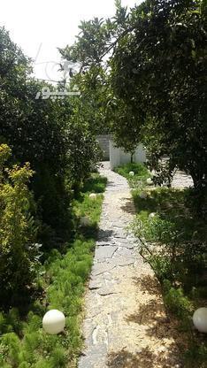 ویلا باغ شهرکی در گروه خرید و فروش املاک در مازندران در شیپور-عکس5