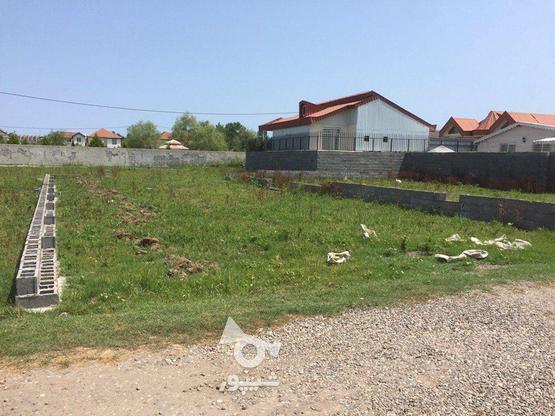 زیباکنار زمین 242متری با مدارک آماده انتقال در گروه خرید و فروش املاک در گیلان در شیپور-عکس1