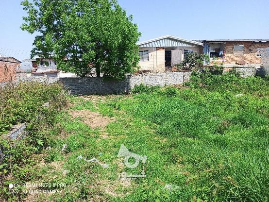 زمین 148متری در کوچکسرا در گروه خرید و فروش املاک در مازندران در شیپور-عکس1