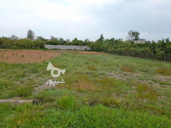 722مترزمین  الحاق به بافت زیر قیمت منطقه شیرود فقیه محله در گروه خرید و فروش املاک در مازندران در شیپور-عکس3