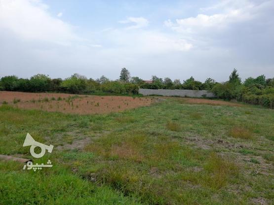722مترزمین  الحاق به بافت زیر قیمت منطقه شیرود فقیه محله در گروه خرید و فروش املاک در مازندران در شیپور-عکس1