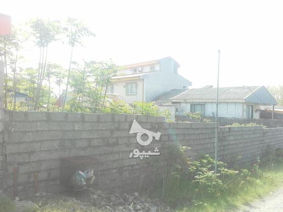 فروش زمین مسکونی 500 متری بندرانزلی بشمن در گروه خرید و فروش املاک در گیلان در شیپور-عکس1