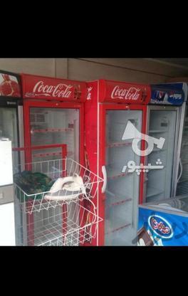 فروش یخچال نوشابه ویخچال بستنی  در گروه خرید و فروش خدمات و کسب و کار در قزوین در شیپور-عکس4