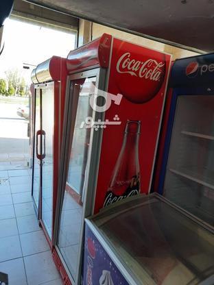 فروش یخچال نوشابه ویخچال بستنی  در گروه خرید و فروش خدمات و کسب و کار در قزوین در شیپور-عکس3