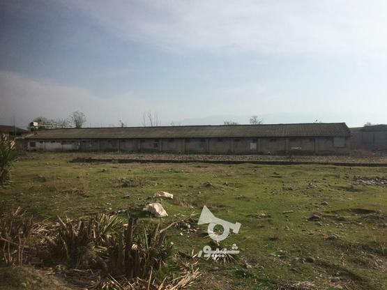 186 متر بافت مسکونی سند تک برگ فروشی در گروه خرید و فروش املاک در مازندران در شیپور-عکس1
