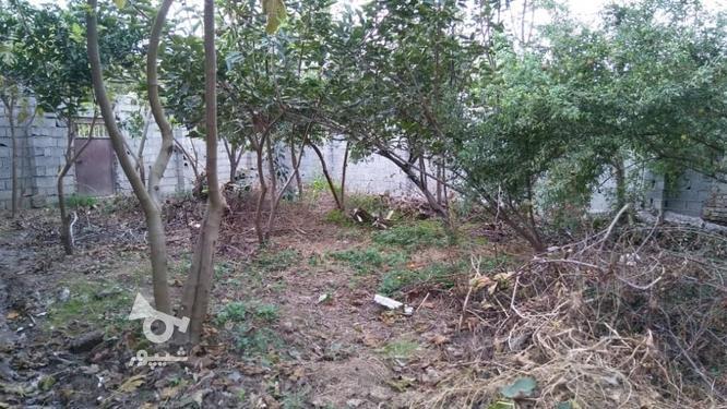فروش 270 متر زمین قبل اکسین  در گروه خرید و فروش املاک در مازندران در شیپور-عکس1