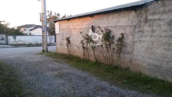 فروش 270 متر زمین قبل اکسین  در گروه خرید و فروش املاک در مازندران در شیپور-عکس3