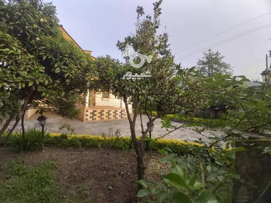 فروش ویلا باغ 400 متری نوشهر (مزگاه در گروه خرید و فروش املاک در مازندران در شیپور-عکس3
