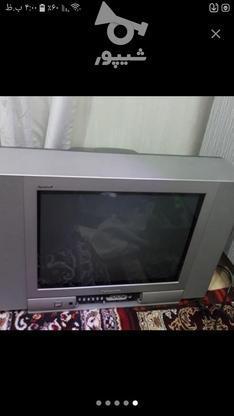 تلویزیون پاناسونیک در گروه خرید و فروش لوازم الکترونیکی در خوزستان در شیپور-عکس2