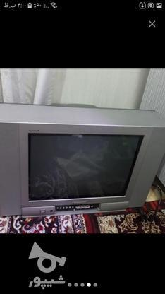 تلویزیون پاناسونیک در گروه خرید و فروش لوازم الکترونیکی در خوزستان در شیپور-عکس1