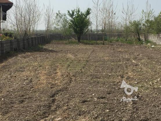 فروش زمین مسکونی 323 متر در کیاشهر در گروه خرید و فروش املاک در گیلان در شیپور-عکس1