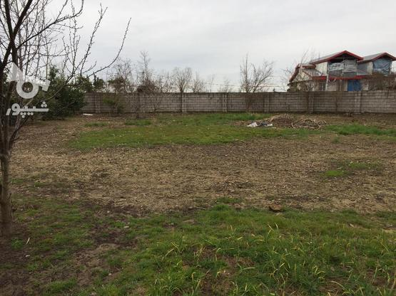 فروش زمین کشاورزی 2200 متر در حومه کیاشهر در گروه خرید و فروش املاک در گیلان در شیپور-عکس2