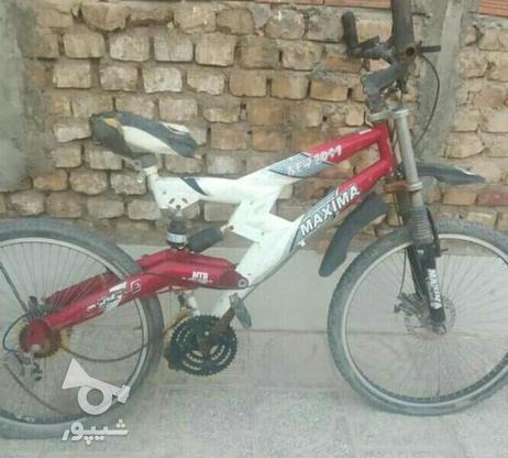 چرخ ماکسیما 2011فوق حرفه ای  در گروه خرید و فروش ورزش فرهنگ فراغت در کرمان در شیپور-عکس1
