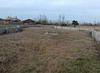 زمین با کاربری باغی/ 500 متری خشکبیجار در شیپور-عکس کوچک