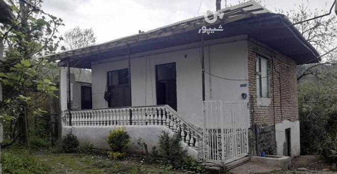 فروش ویلا جنگلی روستایی فاصله 35 دقیقه رامسر در گروه خرید و فروش املاک در مازندران در شیپور-عکس2