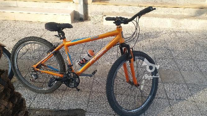 دوچرخه تمام آلمینیومی فلش  در گروه خرید و فروش ورزش فرهنگ فراغت در فارس در شیپور-عکس3