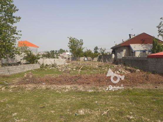 فروش زمین مسکونی با قیمت مناسب در روستای چهارده در گروه خرید و فروش املاک در گیلان در شیپور-عکس1