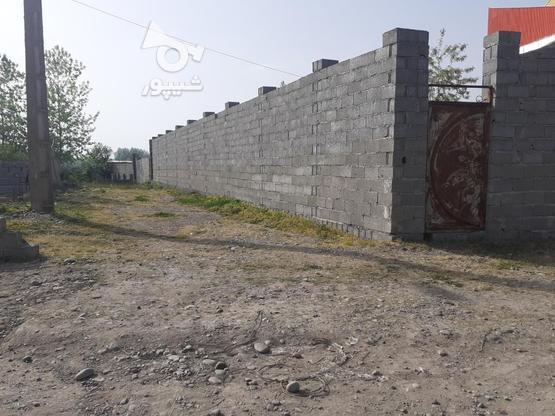فروش زمین مسکونی با قیمت مناسب در روستای چهارده در گروه خرید و فروش املاک در گیلان در شیپور-عکس7