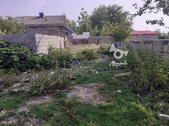 فروش زمین مسکونی با قیمت مناسب در روستای چهارده در گروه خرید و فروش املاک در گیلان در شیپور-عکس4
