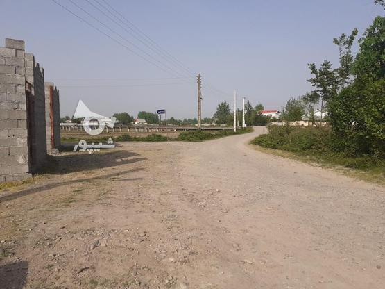 فروش زمین مسکونی با قیمت مناسب در روستای چهارده در گروه خرید و فروش املاک در گیلان در شیپور-عکس6