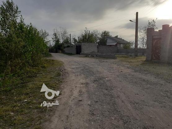فروش زمین مسکونی با قیمت مناسب در روستای چهارده در گروه خرید و فروش املاک در گیلان در شیپور-عکس8