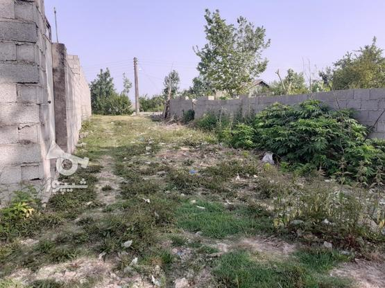 فروش زمین مسکونی با قیمت مناسب در روستای چهارده در گروه خرید و فروش املاک در گیلان در شیپور-عکس5