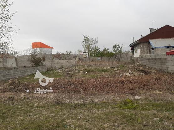 فروش زمین مسکونی با قیمت مناسب در روستای چهارده در گروه خرید و فروش املاک در گیلان در شیپور-عکس2