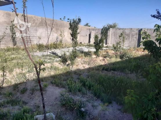 باغ 470 متری 4 دیواری شهریار باغستان باباسلمان  در گروه خرید و فروش املاک در تهران در شیپور-عکس3
