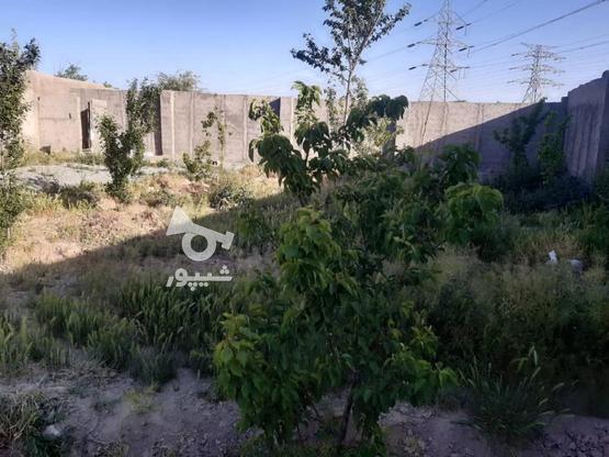باغ 470 متری 4 دیواری شهریار باغستان باباسلمان  در گروه خرید و فروش املاک در تهران در شیپور-عکس1