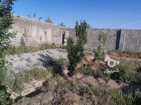 باغ 470 متری 4 دیواری شهریار باغستان باباسلمان  در گروه خرید و فروش املاک در تهران در شیپور-عکس5