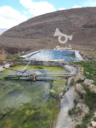 چشمه آب دربست در گروه خرید و فروش املاک در اصفهان در شیپور-عکس1