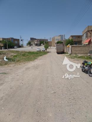 زمین فروشی پیشکوه صدف5 در گروه خرید و فروش املاک در خراسان رضوی در شیپور-عکس4
