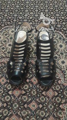 کفش نو و تابستانی زنانه  در گروه خرید و فروش لوازم شخصی در زنجان در شیپور-عکس3