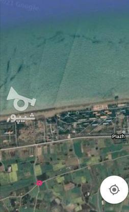 7هزار متر زمین ساحلی در 700متری دریای ساری  در گروه خرید و فروش املاک در مازندران در شیپور-عکس1
