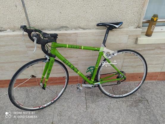 دوچرخه کورسی  در گروه خرید و فروش ورزش فرهنگ فراغت در تهران در شیپور-عکس2
