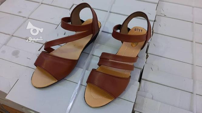 فروش کفش زنانه ودمپایی زنانه عمده در گروه خرید و فروش خدمات و کسب و کار در سیستان و بلوچستان در شیپور-عکس4