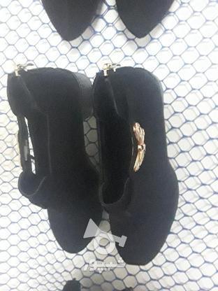 فروش کفش زنانه ودمپایی زنانه عمده در گروه خرید و فروش خدمات و کسب و کار در سیستان و بلوچستان در شیپور-عکس7