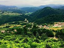 فروش زمین 226 متری ییلاقی و جنگلی ویو عالی در شیپور