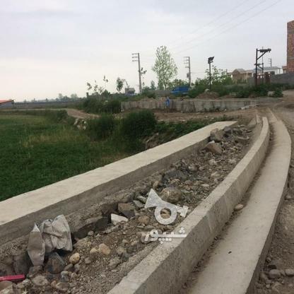 فروش زمین مسکونی 11000 متر در آمل در گروه خرید و فروش املاک در مازندران در شیپور-عکس3