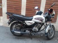 موتور باکسر سفید در شیپور-عکس کوچک