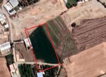 2300 متر زمین کشاورزی در صفاییه در شیپور-عکس کوچک