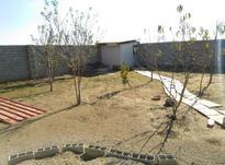 زمین 243 متری بابلسر در شیپور-عکس کوچک